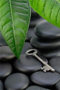 iStock_000003796974XSmall - Key_on_stones