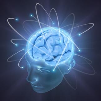 iStock_000007248761XSmall-Brain[1]